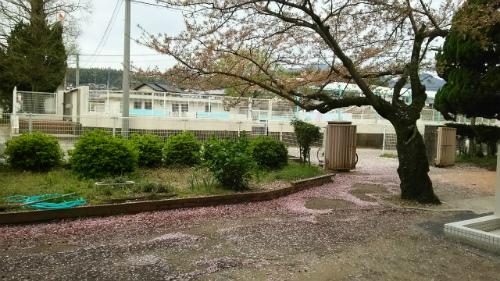 豊浦小学校入学式(160408)④